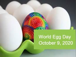 World egg day 2020, Let's celebrate!   RINGBIO