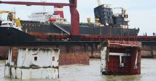 India notifies DG Shipping as apex authority for ships recycling | Shipping